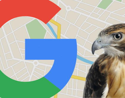 SEO - August 22, 2017: The day the 'Hawk' Google local algorithm update swooped in