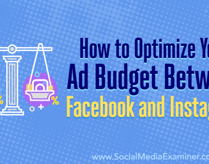 Social Media Marketing - How to Optimize Your Ad Budget Between Facebook and Instagram
