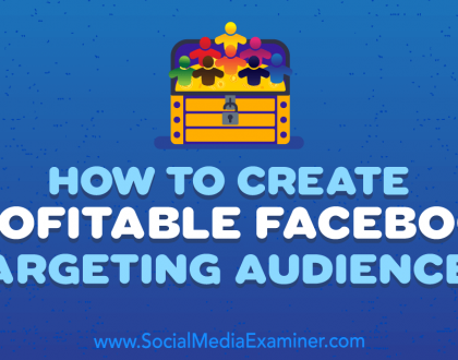 Social Media Marketing - How to Create Profitable Facebook Targeting Audiences