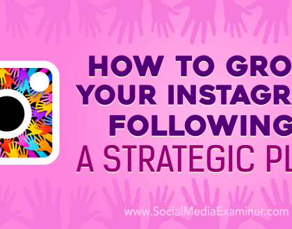 Social Media Marketing - How to Grow Your Instagram Following: A Strategic Plan