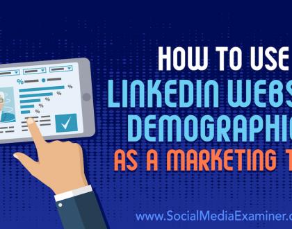 Social Media Marketing - How to Use LinkedIn Website Demographics as a Marketing Tool