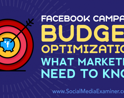Social Media Marketing - Facebook Campaign Budget Optimization: What Marketers Need to Know