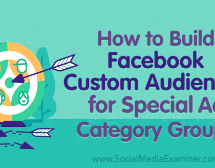 Social Media Marketing - How to Build Facebook Custom Audiences for Special Ad Category Groups